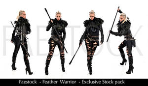 Feather Warrior - Exclusive Stock Pack