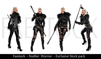 Feather Warrior - Exclusive Stock Pack by faestock