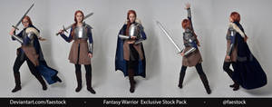 Fantasy Warrior - Exclusive Stock Pack