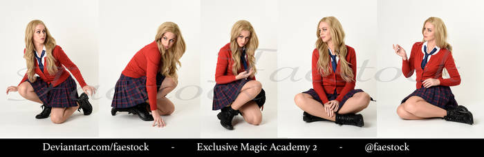 Exclusive Magic Academy Stock Pack 2