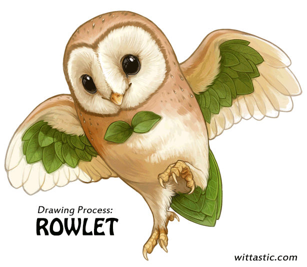 Drawing Process - Rowlet