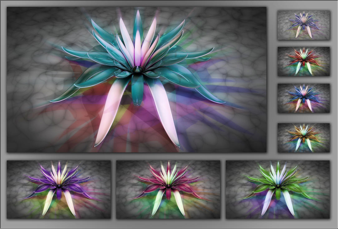 flower 14 by xylomon