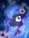Night Pony :3