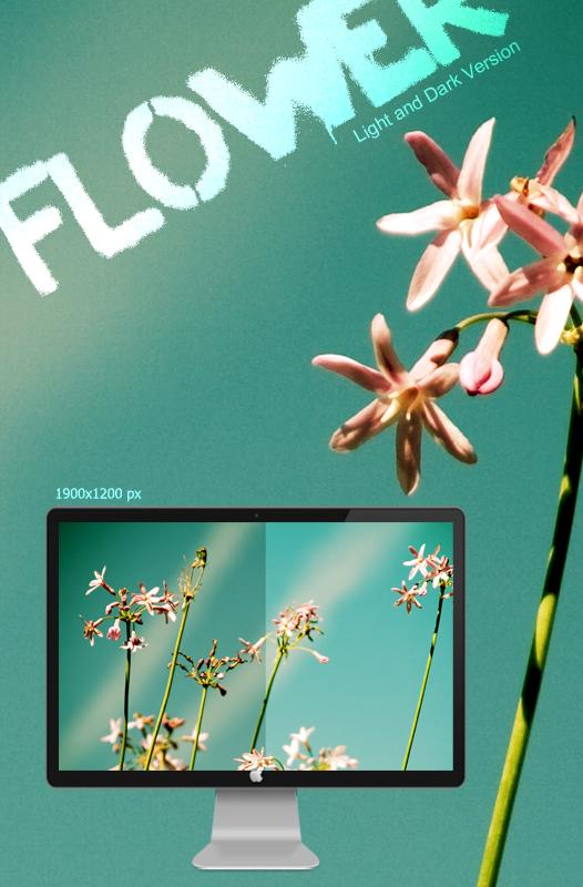 Flower Light and Dark Version by grufixART