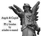 Angels and Cupids brushes