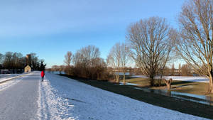 Rhine Meadows, after Highwater, Snow .n Frost