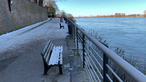 Rhine, after Highwater, Snow .n Frost