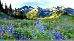 Theme Mountain Windows 7  8 by Adyss88