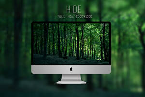 Hide by purethoughts
