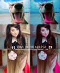 Love in the air psd
