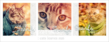 Cats in scarves icon set ver.2 by Keila-the-fawncat