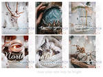 Northen lights : icon set by Keila-the-fawncat