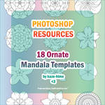 Resource: 18 Ornate Mandala