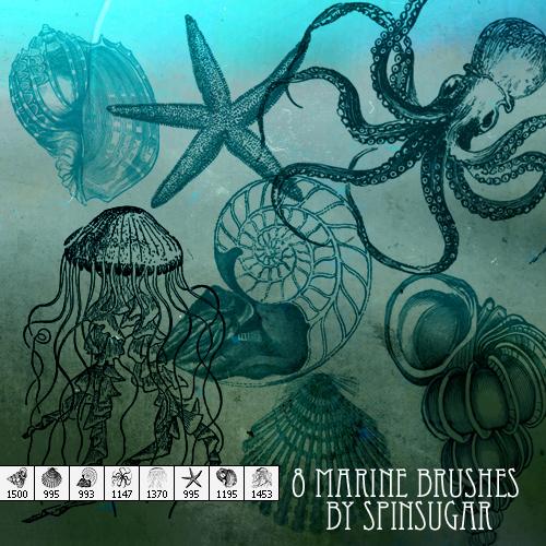 8 Marine Life Brushes by spinmysugar