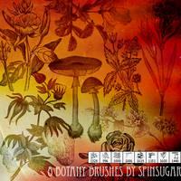 8 Botany Brushes by spinmysugar