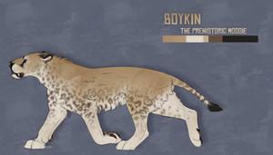 BOYKIN [REF]
