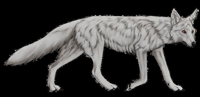 RED FOX [P2U]
