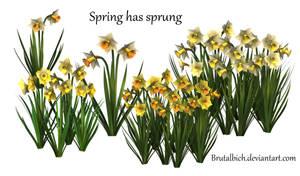 Spring has sprung PSD by brutalbich
