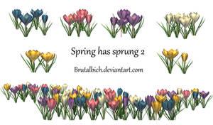 spring has sprung2 PSD by brutalbich