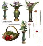 Carnations PSD