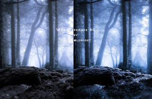 woods II PREMADE 3  by starscoldnight by StarsColdNight