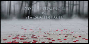 Red rose Petals III PNG by Starscoldnight