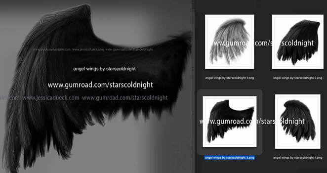 angel wings set by starscoldnight