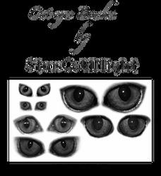 Cat Eyes Brushes By Starscoldnight by StarsColdNight