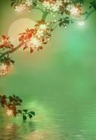 1064 sakura reflection - Animated Version by TimTaller