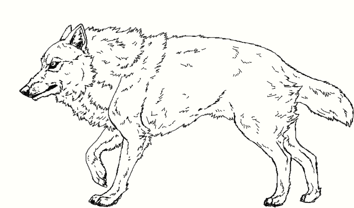 Muro Wolf Lineart by WhiteWolfCrisis13