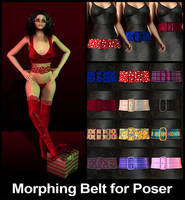 Morphing Belt Prop for Poser by parrotdolphin
