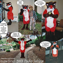 2013 AnimeNext Collage by PudgeyRedFox