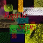 Reptile Skin Brushes
