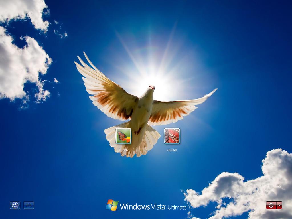 Poletjela golubica download google