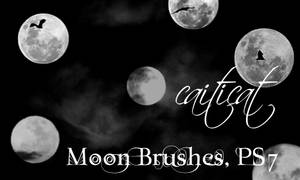 Moon Brushes for PS