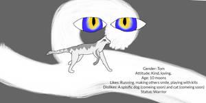 Windwhisper-Character Sheet