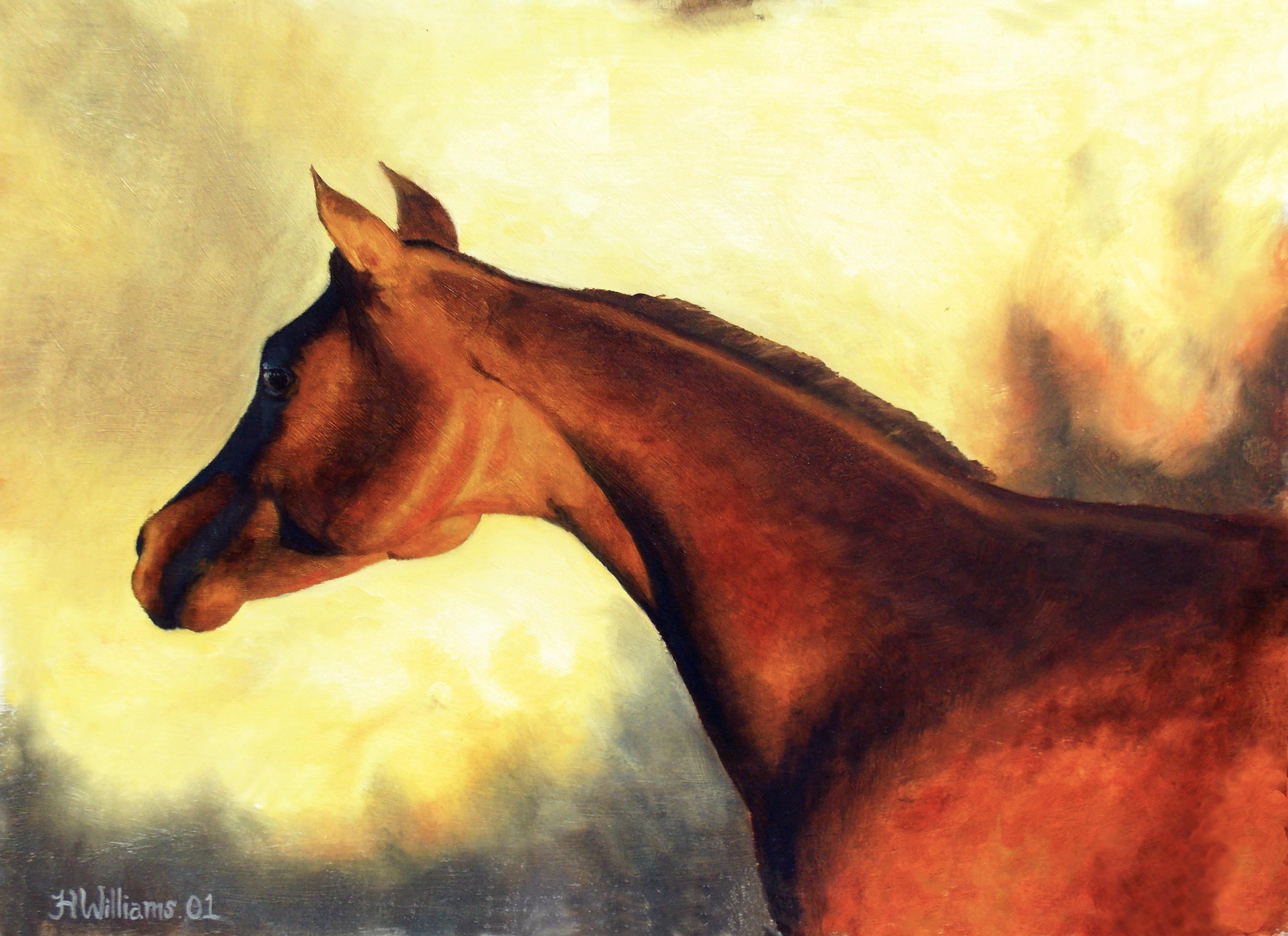 Red Arabian Horse By Keltuckyart On Deviantart