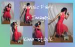 Classic Fairy 7