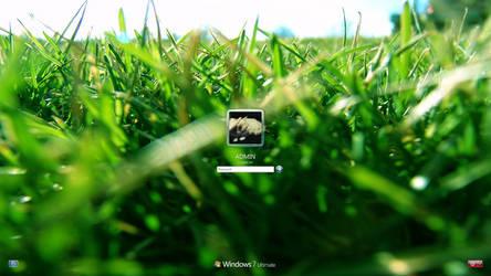 Grass Fields - W7 Logon