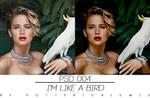 +I'mLikeABird .psd Coloring
