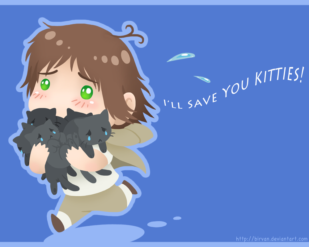 I'll Save You Kitties - Wallpaper by Birvan