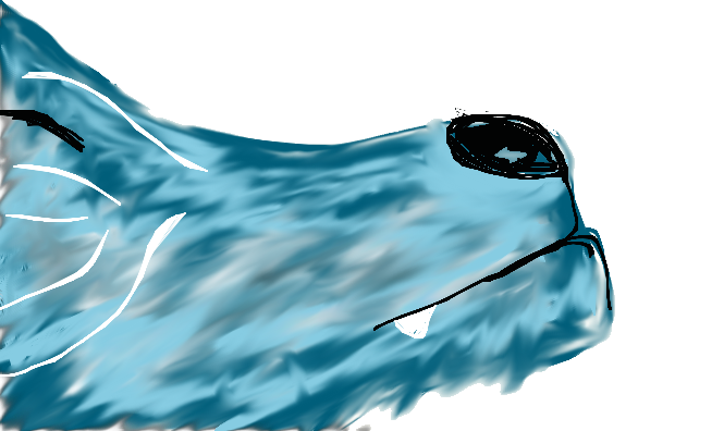 My blue wolf :} by Wolfrain98