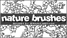 Brushes 04