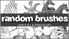 Brushes 06 by efamous