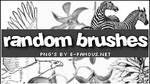 Brushes 06