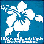 Hibiscus Brush Set