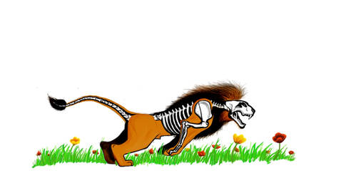 Skeletal Lion