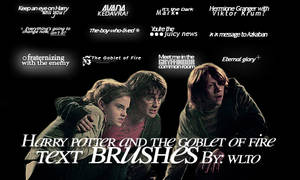 Harry potter text brushes by whenlovetakesover