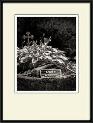 SMS Matting and Framing Action