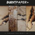Burnt Paper // TEXTURES